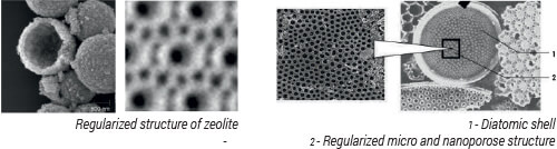 zeolite-deatomite